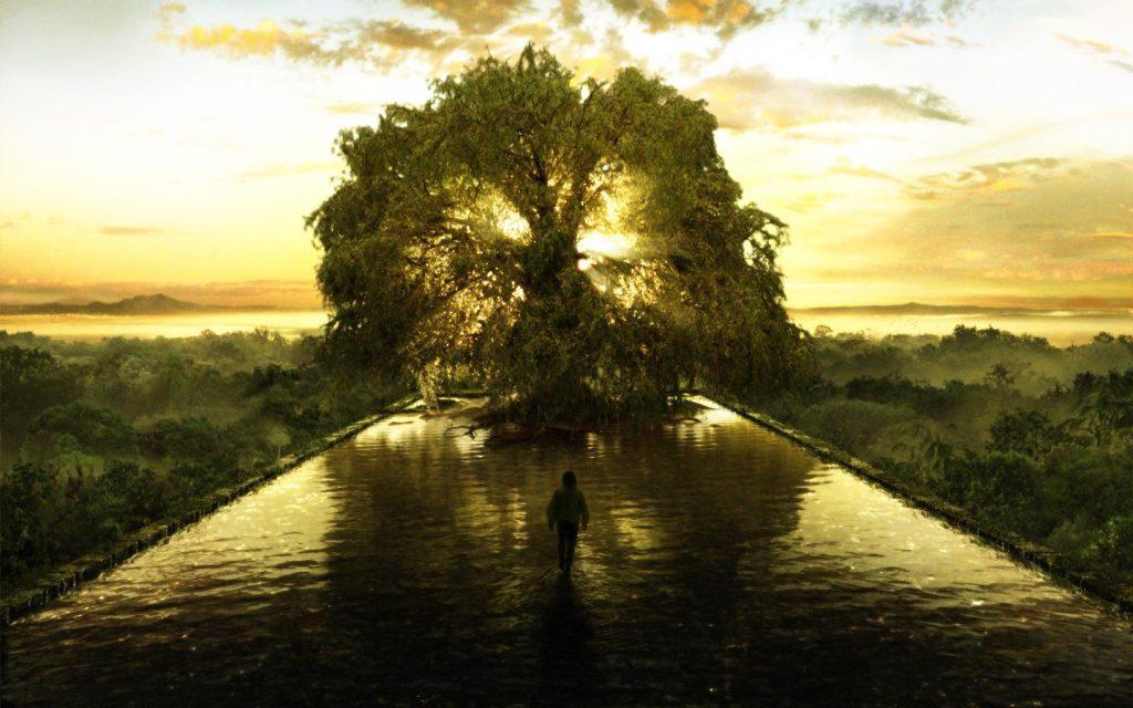 Az élet fája ebben a pillanatban is áradó bőséggel tölti meg életünket.