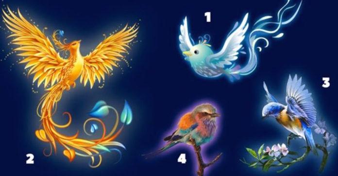 Válassz egy madarat, felfedi a személyiséged legkülönlegesebb vonásait!