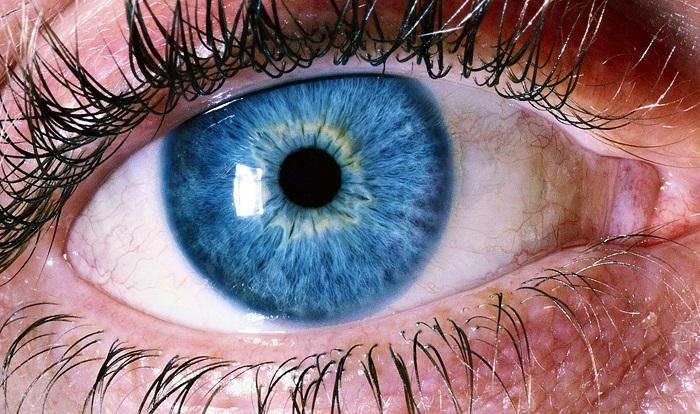 A kék szemű emberek rejtélye, amelyről csak kevesen tudnak!