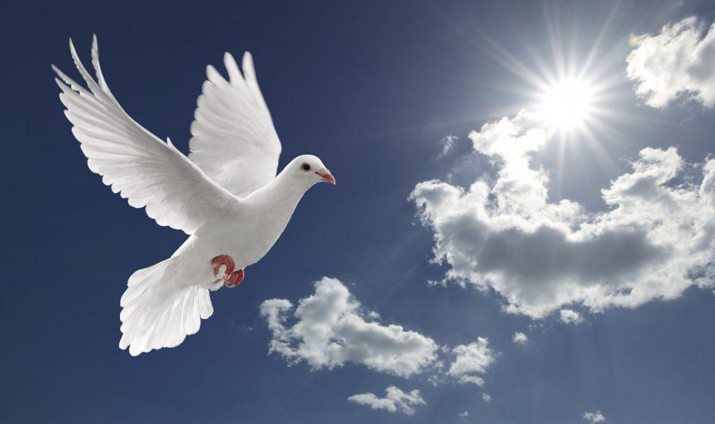 Angyali üzeneted hétfőre: Kérd azt, amire vágysz! Tudasd angyalaiddal, hogy mire van szükséged!