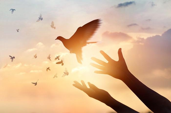 Angyali üzenet péntekre: Felemelkedsz vagy lezuhansz?