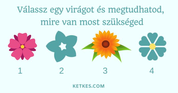 Válassz egy virágot és megtudhatod, mire van most a legnagyobb szükséged