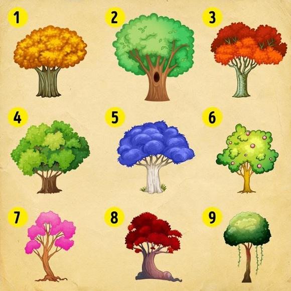 Melyik fát választod? Ilyen változások várnak rád az életedben 2022-ben!